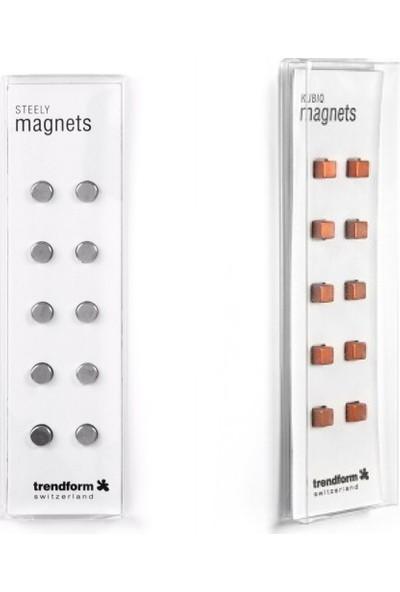 Trendform 2'li Planner/okul Magneti Gümüş Küp ve Bakır Küp