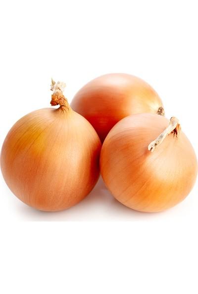 Meyve Ağacım Kuru Soğan - 5 kg