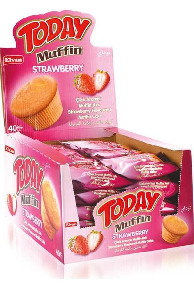 Elvan Today Muffin 23 gr x 40