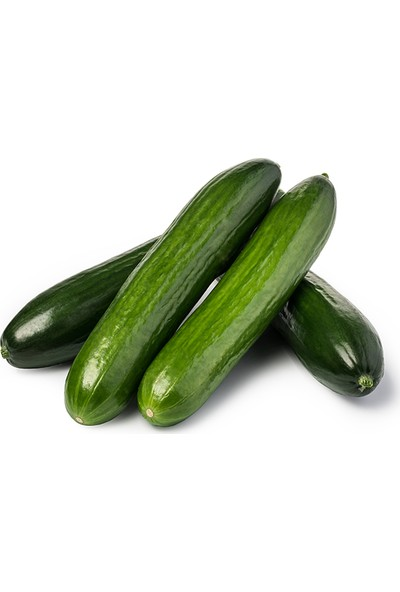 Meyve Ağacım Salatalık - 5 kg