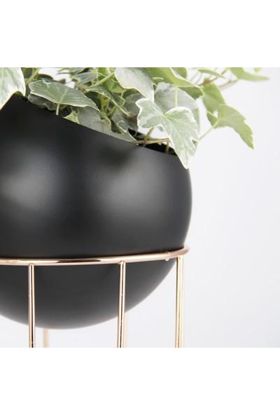 Coho Tarz Bakır Renk Telli Siyah Maxi Küre Saksı