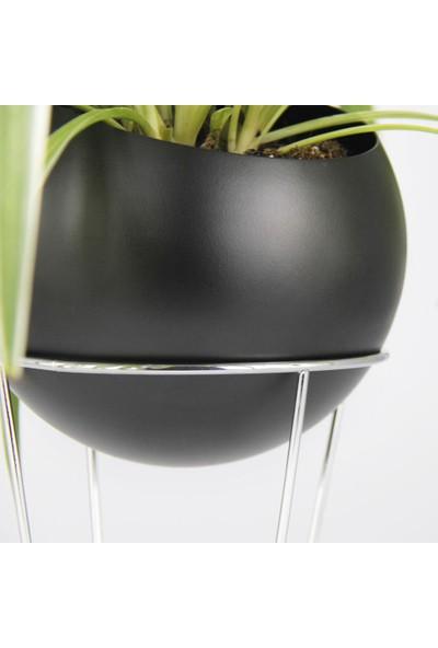 Coho Stil Krom Standlı Siyah Maxi Küre Saksı