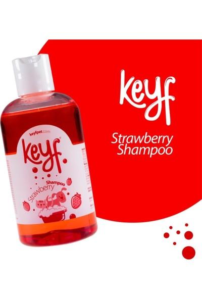Keyf Kedi Köpek Şampuanı Strawberry Çilek Aromalı Shampoo