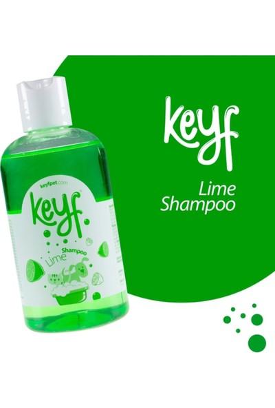 Keyf Kedi Köpek Şampuanı Lime Limon Aromalı Shampoo