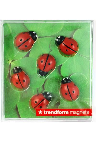 Trendform 2'li Buzdolabı Mıknatısı Ugur Böceği ve Kristal Taş