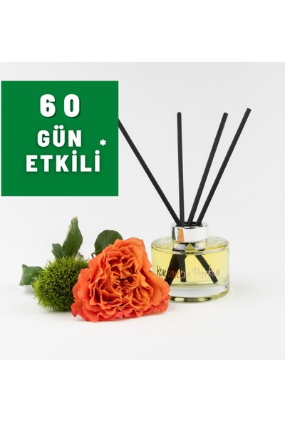 Konsantre Parfüm Maison Francis Kurkdjian - Amyris Homme Oda Kokusu