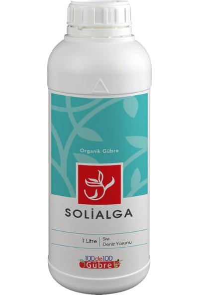 SOLİALGA (Sıvı Deniz Yosunu) Organik Gübre 1 Lt