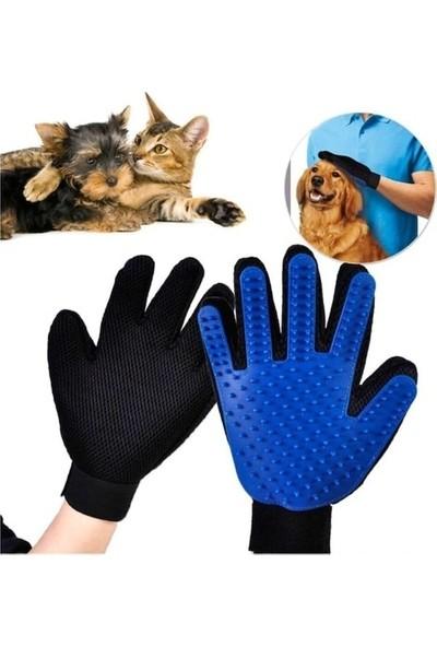 İndirim Kap Kedi Köpek Tüy Toplama Eldiveni Evcil Hayvan