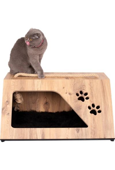 Can Amca Kedi Köpek Yuva Yatak