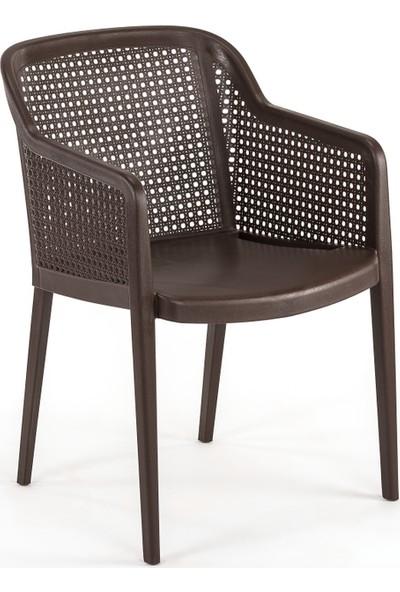 Bintaş Mobilya Venge Minderli Bahçe Masa Sandalye