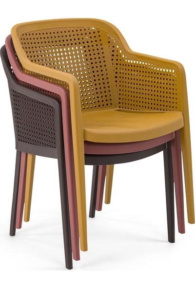 Bintaş Mobilya Bahçe Masa Sandalye Takım