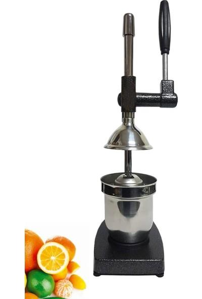 Hayveys Ev Tipi Kollu Meyve Sıkma Makinesi