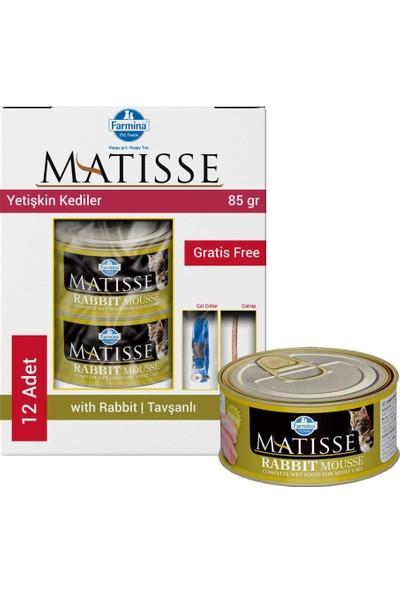 Matisse Mousse Rabbit Tavşanlı Kedi Konservesi 12X85 gr