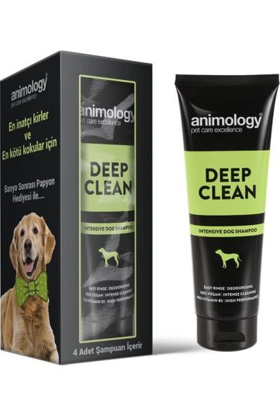 Animology Deep Clean Derin Temizlik Köpek Şampuanı 4X250 ml