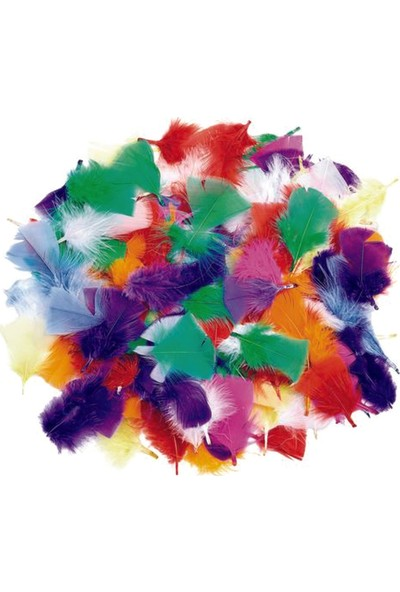Colorations Renkli Kuş Tüyleri