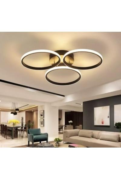 Burenze A+ Modern Plafonyer Power LED Avize Kademeli 3 Renk Koyu Kahve BURENZE559