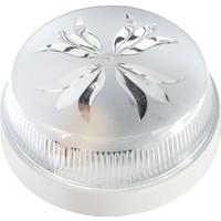 Vega Glob Tavan Lambası