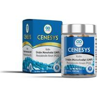 Armin Cenesys 15 Tablet
