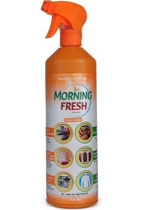 Morning Fresh 750 ml Kir ve Leke Sökücü
