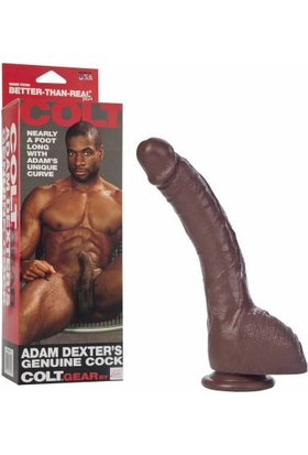 Colt Adam Dexter Realistik Dong 22 cm ve Playboy Masaj Yağı