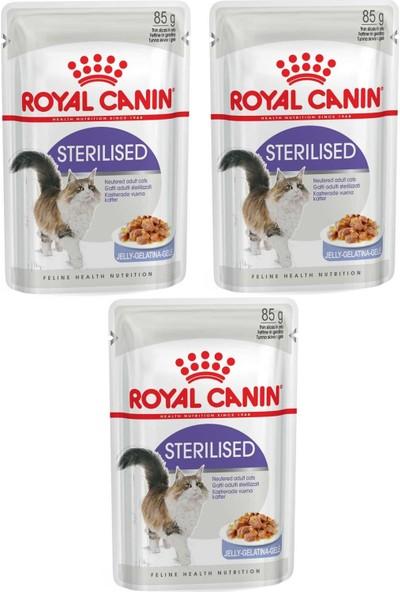 Royal Canin Sterilised Jelly Kısır Kedi Konservesi 85 gr 3 Adet