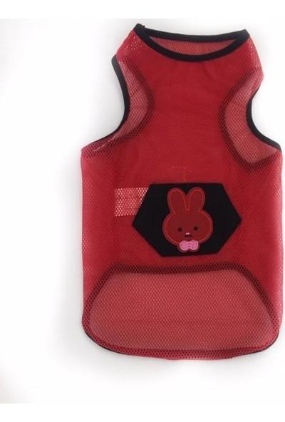 Kemique Red Bunny Atlet Kedi Kıyafeti Kedi Elbisesi