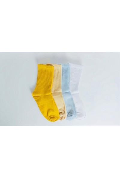Shock Shocks 4'lü Düz Renkli Soket Çorap