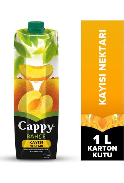 Cappy Meyve Suyu 1 Lt Kayısı