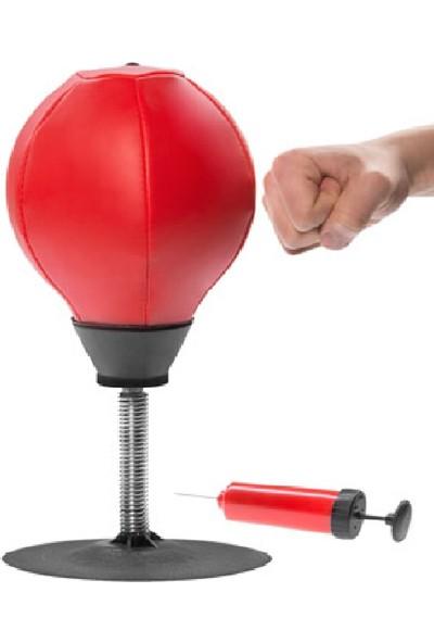 Dr. Cornell Punching Ball Masa Üstü Pencikbol Topu, Hız-Reflex-Stres Topu