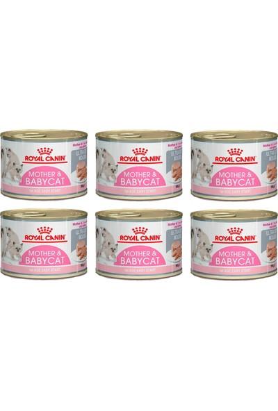 Royal Canin Mother&babycat Kedi Konservesi 195 gr (6 Adet)