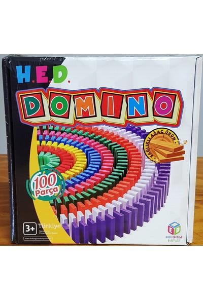 Hobi Eğitim Dünyası 100 Parça Domino Taşları Dizme Oyunu