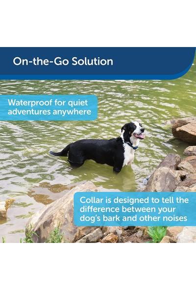 Petsafe Köpek Eğitim Tasması