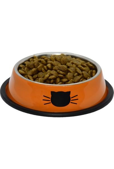 Griffonpet Kedi Paslanmaz Çelik Mama Kabı 250ml