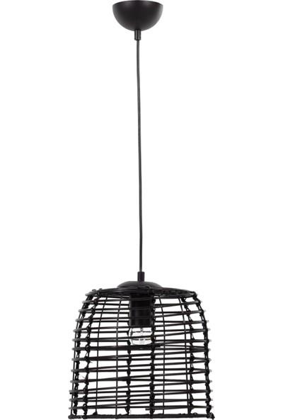 Mudo Concept Argentına Hasır Sarkıt Black Lamba 26 Cm
