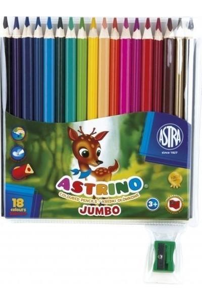 Astra Jumbo Kuru Boya Kalemi 18 Renk