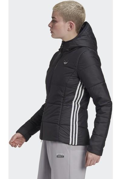 Adidas GD2507 Slım Jacket Kadın Mont