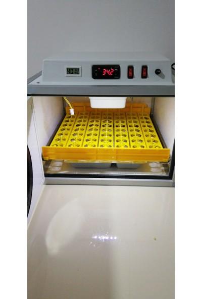 Elif 56 Lı Tam Otomatik Hobby Kulucka Makinası