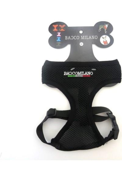 Bacco Milano Köpek Göğüs Tasması Siyah Renk / L Beden