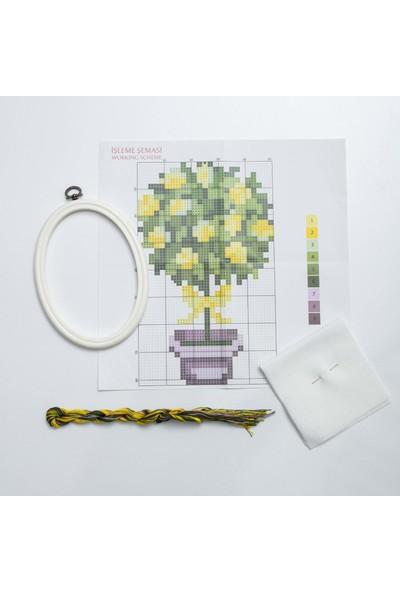 Favore Casa Esta Rosa Çerçeveli Kaneviçe Kiti Oval Küçük Saksı Limon Etamin Goblen Set 23x18 cm