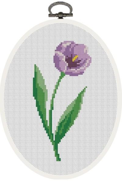 Favore Casa Esta Rosa Çerçeveli Kaneviçe Kiti Oval Küçük Lale Etamin Goblen Set 23x18 cm