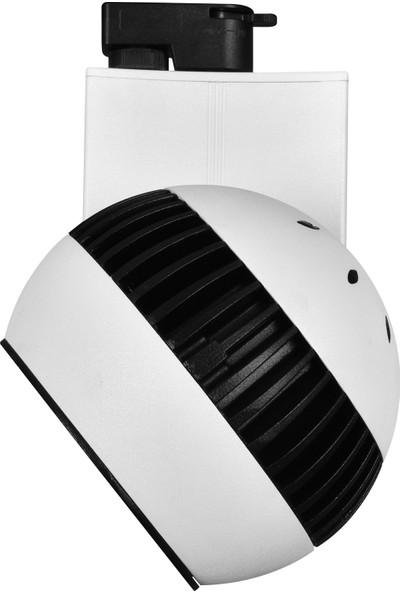 DLC Ray Spot 30W Beyaz 3000K NR210