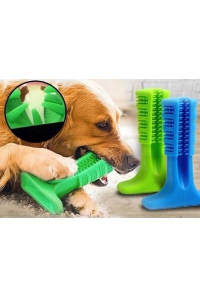 Welfare Köpek Diş Fırçası Isırma Aparatı Büyük Boy 15 x 10 x 4 cm