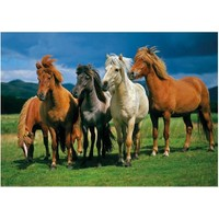 Dino Puzle 1000 Parça İzlanda Atları Puzzle