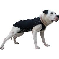 Win Pet Ameliyat Sonrası Köpek Elbisesi M 64*60 cm