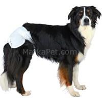 Trixie Köpek Pedi 12 adet XL Büyük Boy