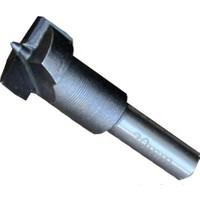 Wert 2502 Tas Mentese Matkap Ucu, Ø20mm, Tungsten Karpit Uclu