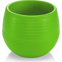 Homecare Kaktüs Saksı Mini Fıstık Yeşili Renk 091975