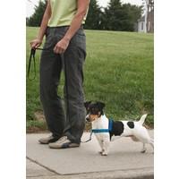 Deluxe Easy Walk™ Harness Mavi Köpek Göğüs Tasması - Small ( 38 - 51 cm)
