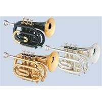 Jupiter JPT-416L Pocket Trompat (Gold lacquer)