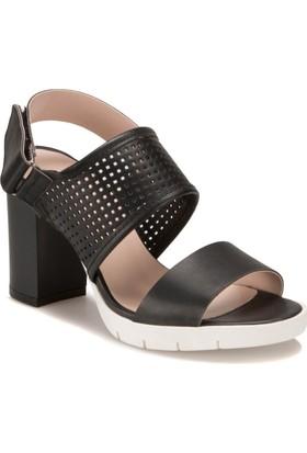 Miss F DS17071 Siyah Kadın Sandalet